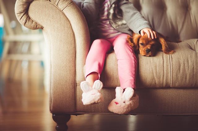 Zwierze dla naszego dziecka